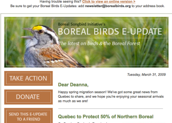 Boreal Bird enews